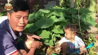 Khương Dừa về quê làm nông dân, chăm sóc trang trại rau nghìn tỷ cho bạn thân?