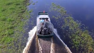 Florida Travel: Experience Wild Florida