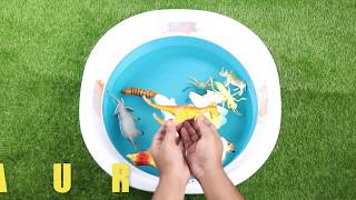 Learn Wild Animals Sea Animals Name Baby Mom Education Video Toys for Kids