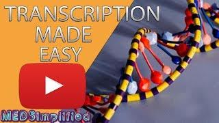 Transcription Made Easy- From DNA to RNA (2018)