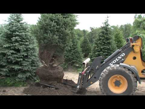 Alta Equipment Company - Volvo Customer Testimony - Milarch Nursery