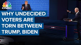 Why undecided voters are torn between President Donald Trump and Joe Biden: Political strategist