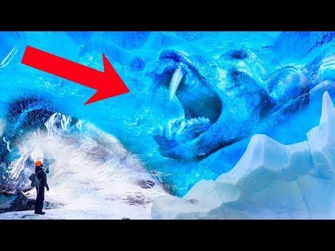 Эти 5 находок во льду порвали весь мир. Это стоит посмотреть