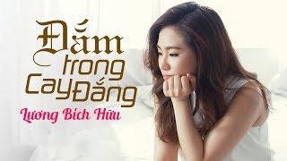 Đắm Trong Cay Đắng - Lương Bích Hữu [Lyrics]