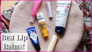 MY FAVORITE LIP BALMS! 2019