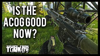 ACOG Good Now? - M4 Duo PvP - Escape from Tarkov