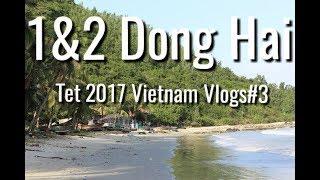 1&2 Dong Hai, TET 2017 | Vietnam Vlogs#3