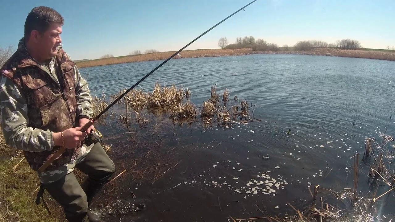 Платные рыбалки в липецке