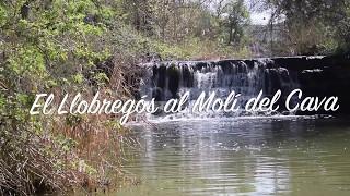 Escoltant els rius de la Vall del Llobregós