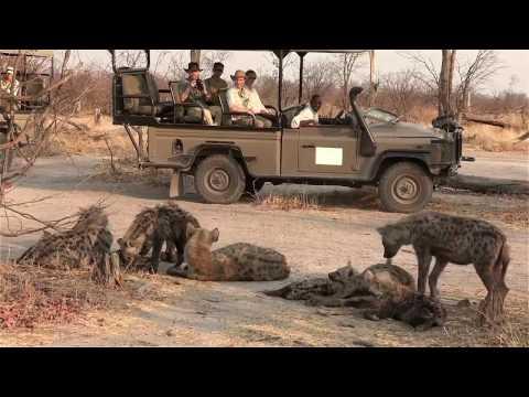 Machaba Camp - Botswana