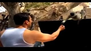 Watch Salman Khan's Fun With Langurs in this Adorable Vide..