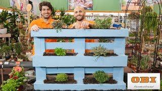 Come coltivare un orto verticale sul terrazzo