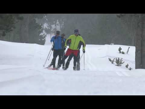 Nordic skiing at your own pace in Catalonia