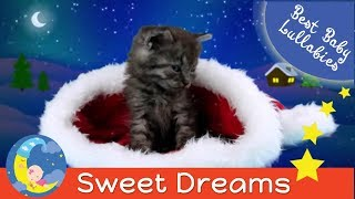 Baby Lullaby Christmas Lullabies For Babies To Go To Sleep-Lullaby-Baby Songs Sleep Music-Baby Sleep