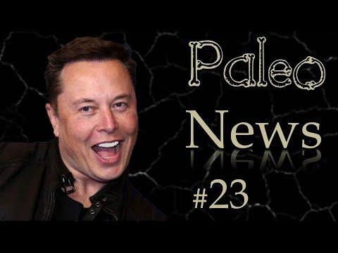 Elon Musk, des milliards de T. rex et les vegans le détestent