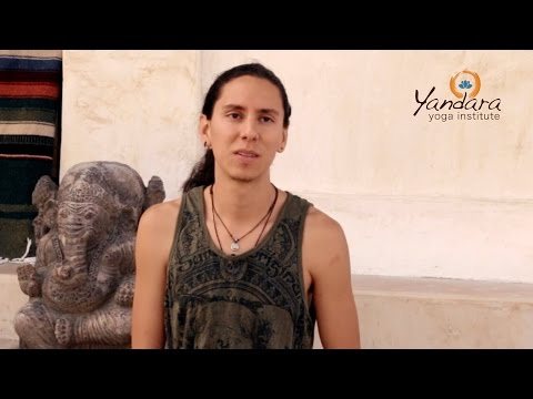 Yandara Yoga Teacher Training testimonial: Maui