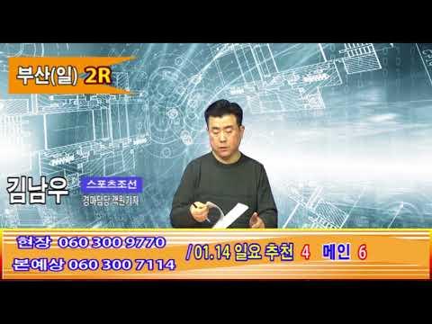 김남우0114일중계