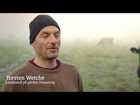 Thiese Græsmælk kampagne film