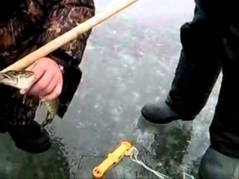 Приколы на рыбалке. Подборка