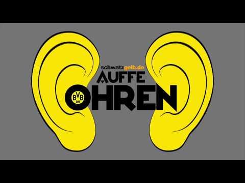 Auffe Ohren #46: Im Gespräch mit... Neven Subotic (1) | BVB Podcast von schwatzgelb.de