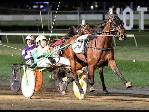 2016 Breeders Crown 3-Year-Old Colt Trot-Bar Hopping