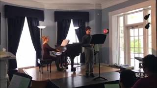 L. Delibes Waltz from Coppelia, clarinet