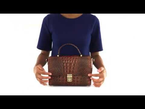 Brahmin Danielle Satchel Video