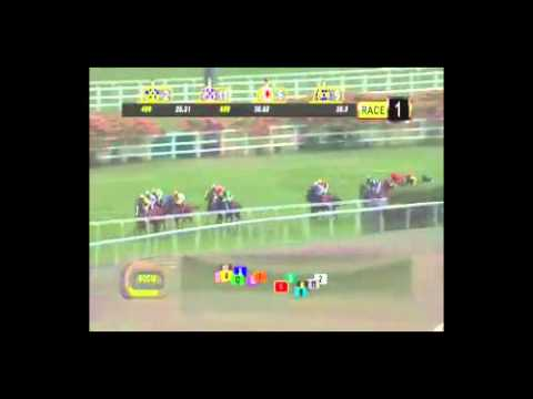 David Flores' ride aboard Kiss Me, February 22 2015