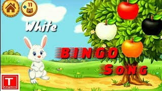 BINGO song | Learn colors by tapping the objects of same color | Nursery rhymes for children's !
