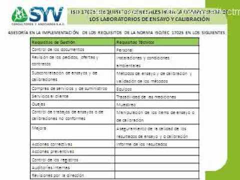 Presentacion SYV Consultores.flv