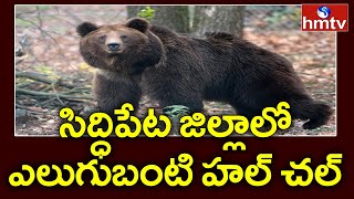 Wild Bear enters village temple in Telangana..