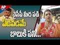 MLA Roja Controversial Comments On AP CM Chandrababu Naidu over Party Jumpings | AP24x7