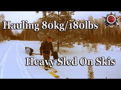 Solo Deep Woods Winter Camping 2019 Two Day Trip