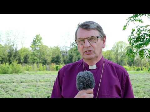 Biskop em Per i Roman