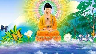 Mỗi Tối Nghe Kinh Phật Này Sẽ Được An Lành Hạnh Phúc Gia Đạo Bình Vui Vẻ