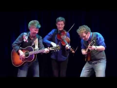 Hounds of Finn - LIVE - Whiskey Before Breakfast 01/31/2015