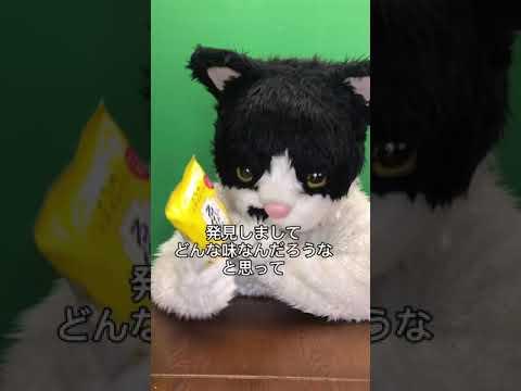 むぎ(猫)「沖縄こんちくわシリーズvol.7ゑびたま」