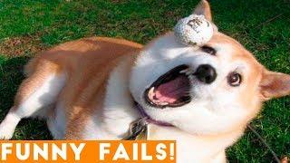 ULTIMATE FUNNIEST PET FAILS 2018 | Funny Pet Videos