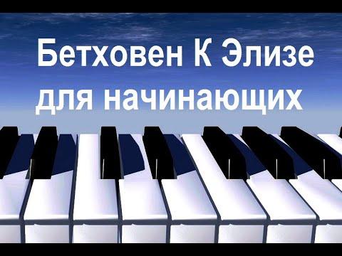 Музыку Бьянка И Кеды