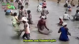 Cách Bắt Cá của Người Ấn Độ