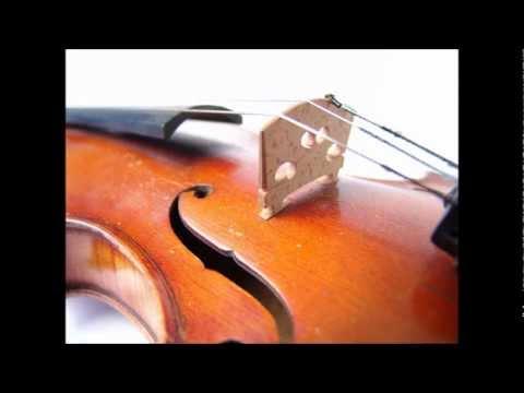 Violin Concerto No.1 In B Flat, K.207 : 2. Adagio