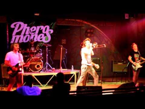 PHEROMONES - Я иду домой (Элизиум Cover)