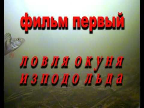 Ловля окуня - подводные съемки