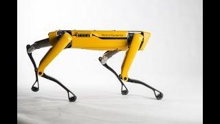 The best robot SpotMini