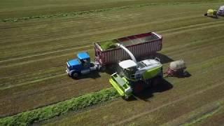 CY Harvesting, Chopping Hay 2017