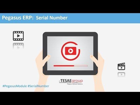 Pegasus ERP - Video Διαχείρισης Serial Numbers