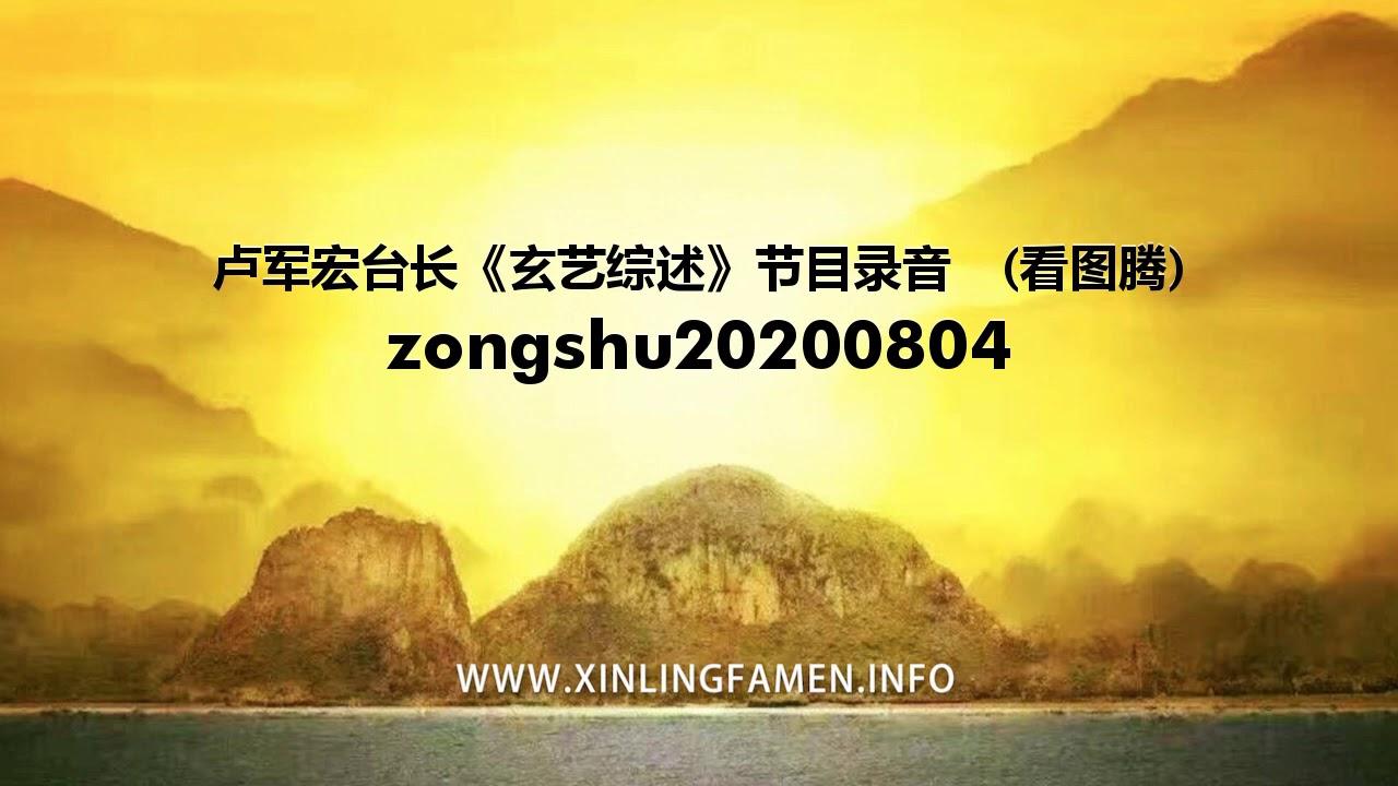 心灵法门 zongshu20200804 - 卢军宏台长《玄艺综述》节目录音  (看图腾)