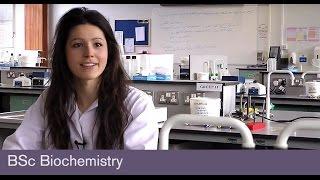 BSc Biochemistry - School of Biosciences