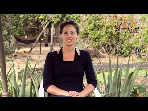 Yandara Yoga Teacher Training testimonial: Kate