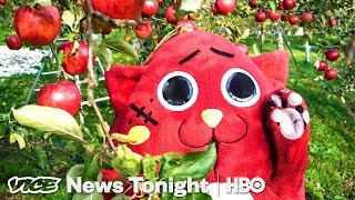 Nyango Star: The Heavy Metal Cat Mascot Saving A Japanese Farm (HBO)